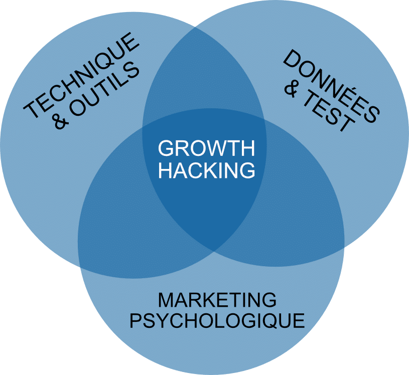 Synthèse growth hacking